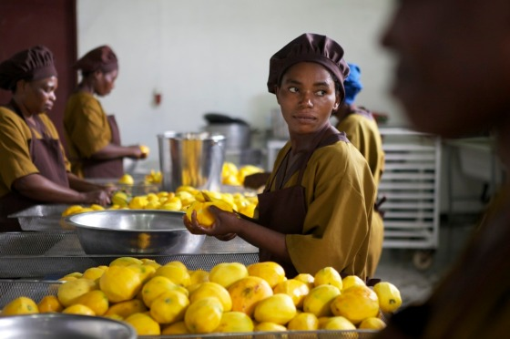 Mango Cutting in Chankwakwa Factory