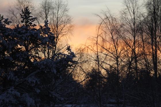 A Swedish Sunset